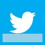 icona_twitter